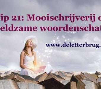 Schrijftips van De Letterbrug, mooischrijverij of woordenschat
